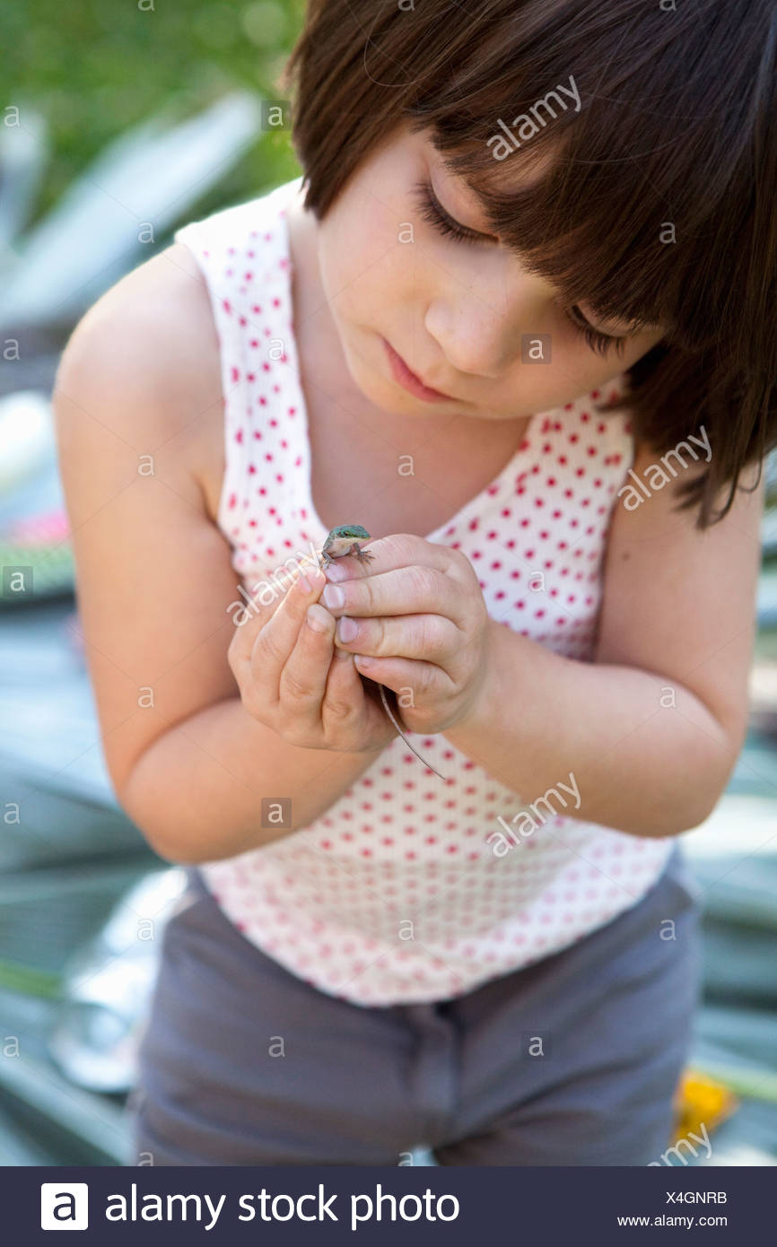 Girl holding and looking at green anole lizard in garden - Stock Image