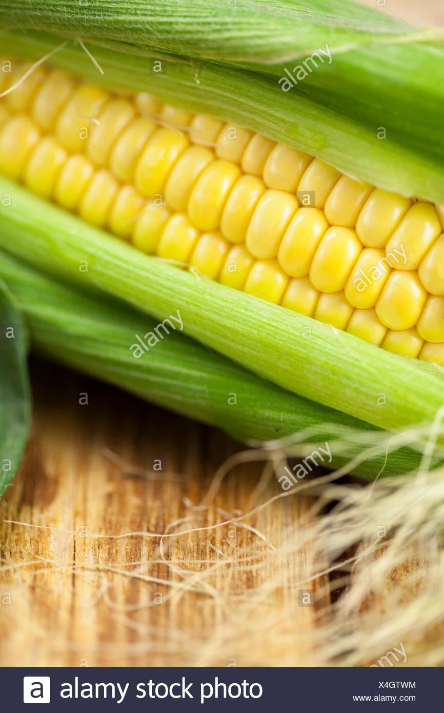 Sweetcorn Cob - Stock Image