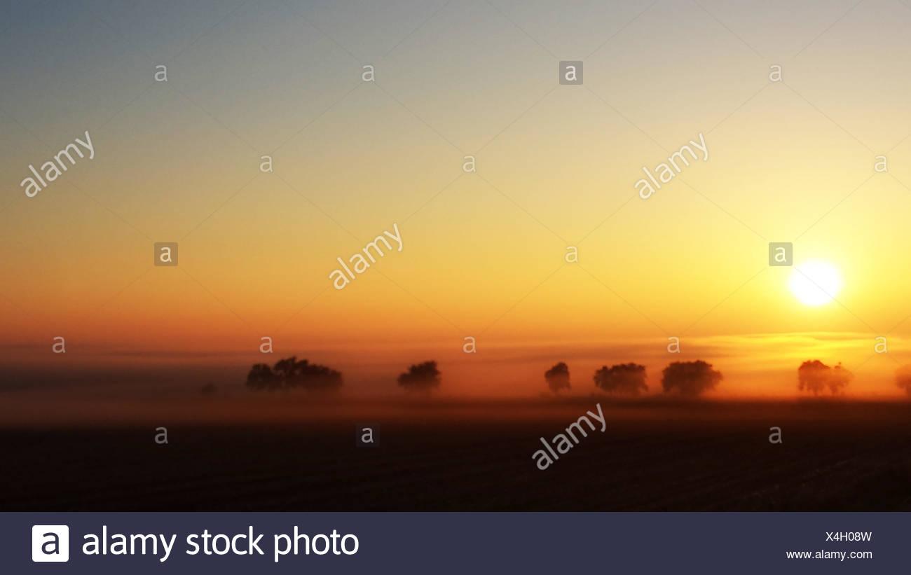 USA, Colorado, Foggy sunrise - Stock Image