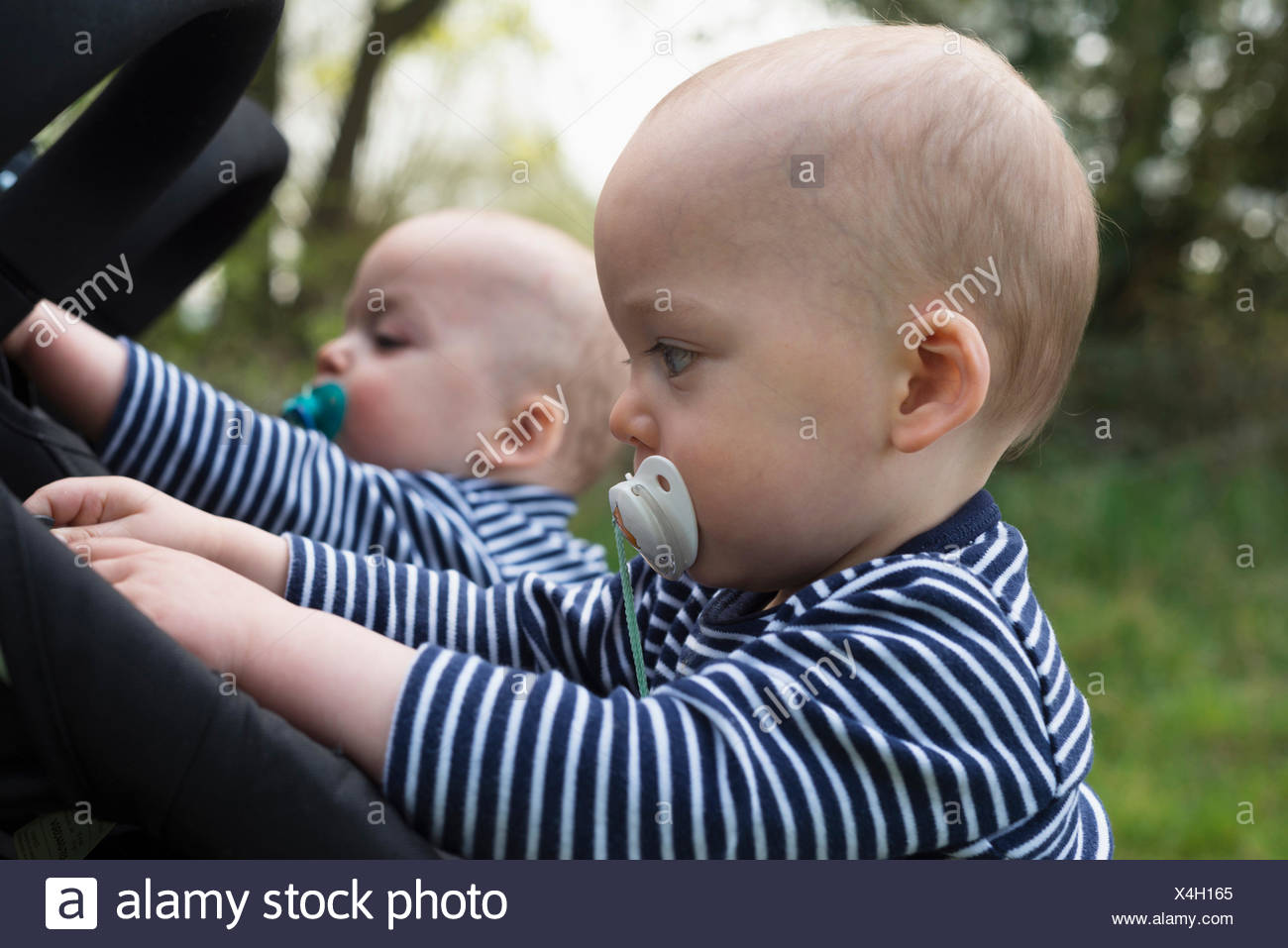 Baby twin brothers with pacifiers playing with their pushchairs - Stock Image