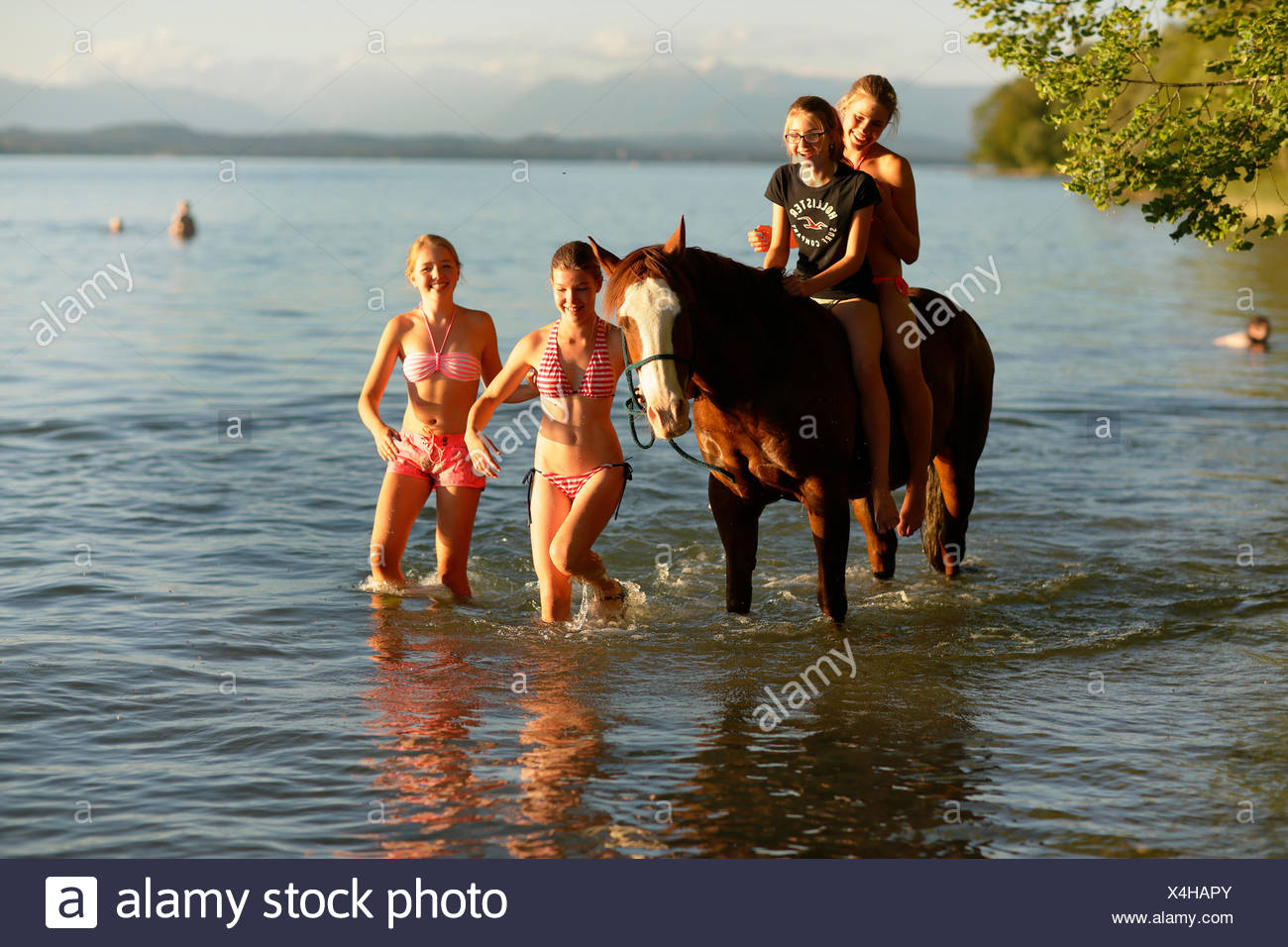 Four girls with a horse in lake Starnberg, Ammerland, Munsing, Upper Bavaria, Germany - Stock Image
