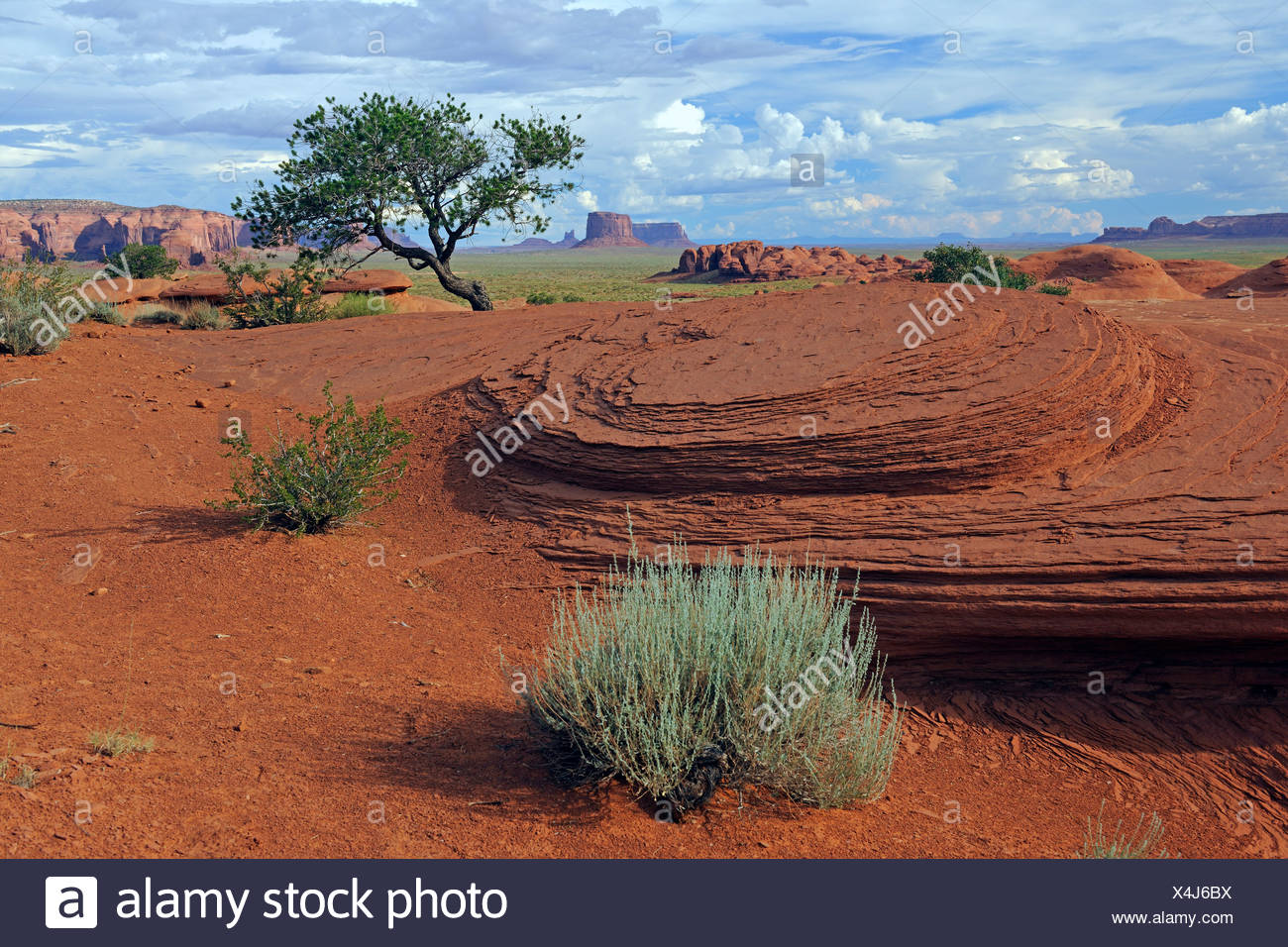 Typical landscape of red sandstone in Mystery Valley, Arizona, USA - Stock Image