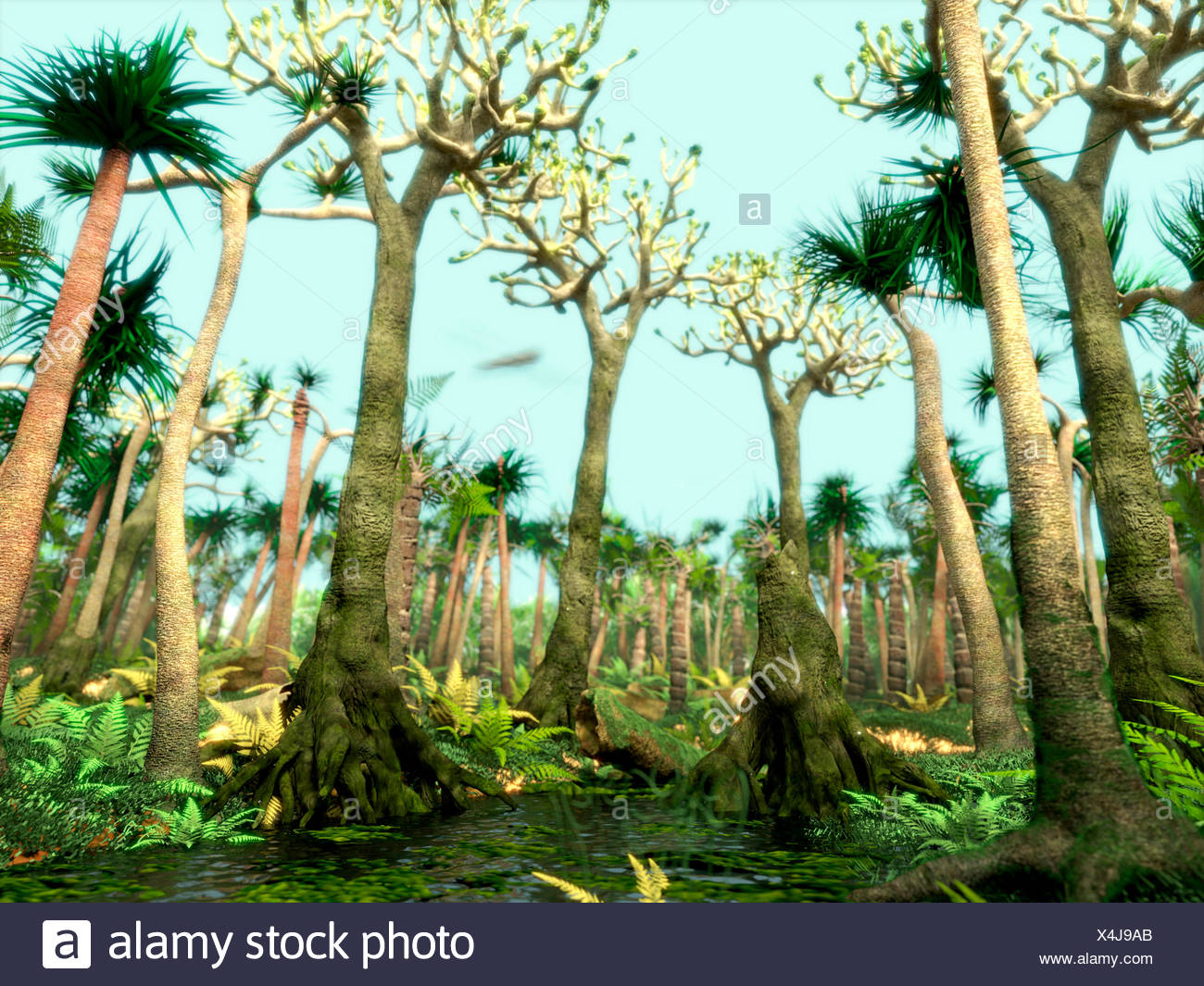 Carboniferous Geology Geologic Period Coal Bed Swamp Forest
