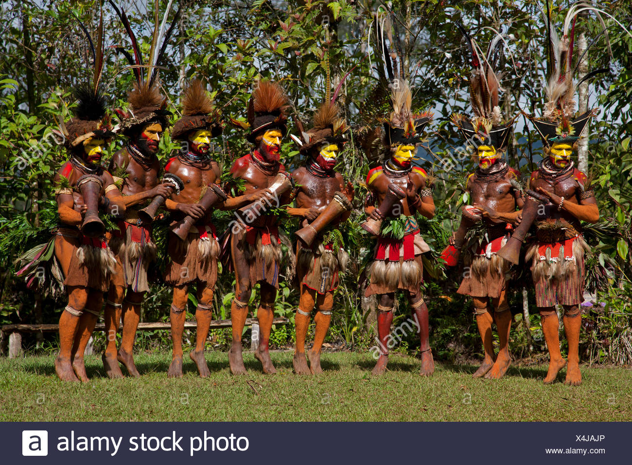 Huli Wigmen Dance and Drum in their Bird of Paradise Feather Headdresses - Stock Image