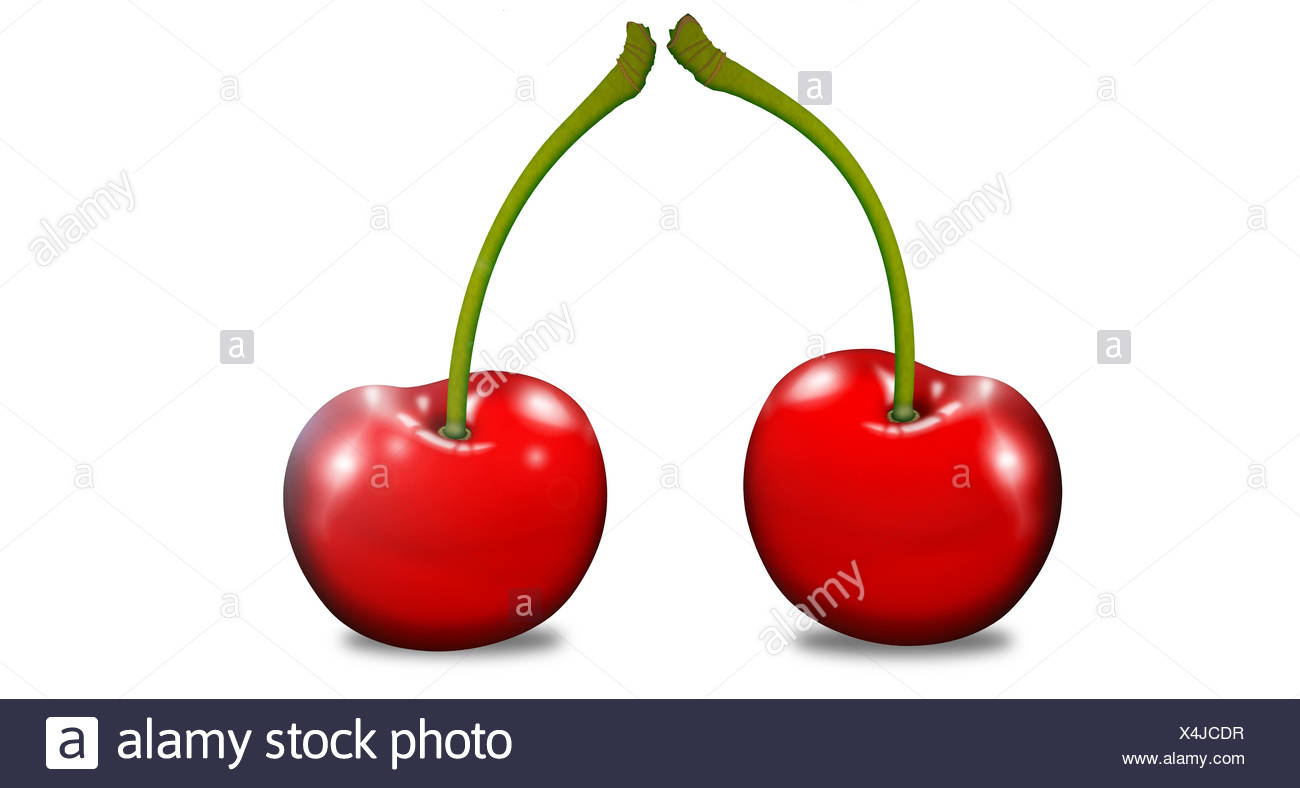 Two cherries with stems, illustration - Stock Image