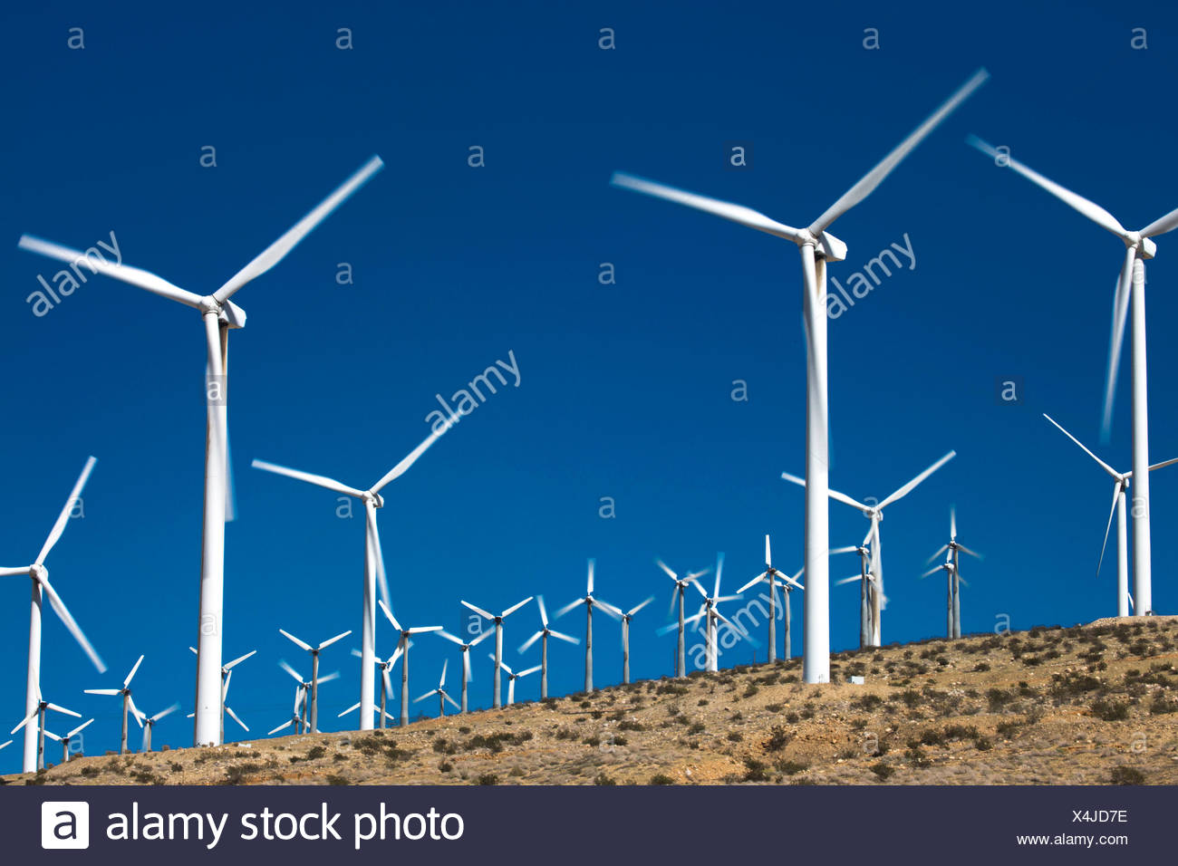A portion of the more than 3,000 wind turbines at the San Gorgonio Pass Wind Farm outside Palm Springs, California. The Riverside County facility was developed beginning in the 1980s, and is one of three major wind farms in the state. - Stock Image
