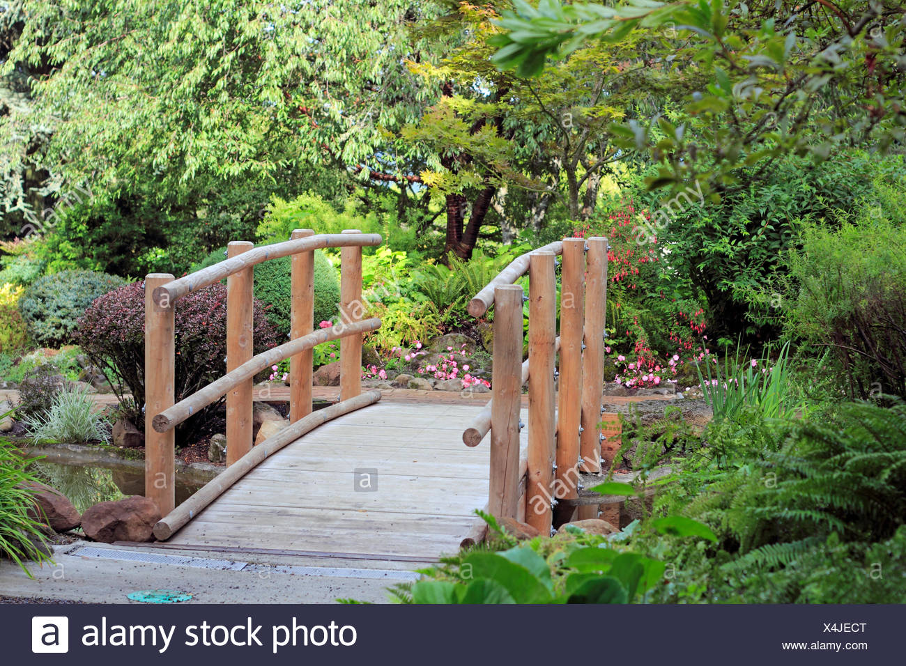 Wood Bridge Wooden Beautiful Beauteously Nice Tree Trees Park