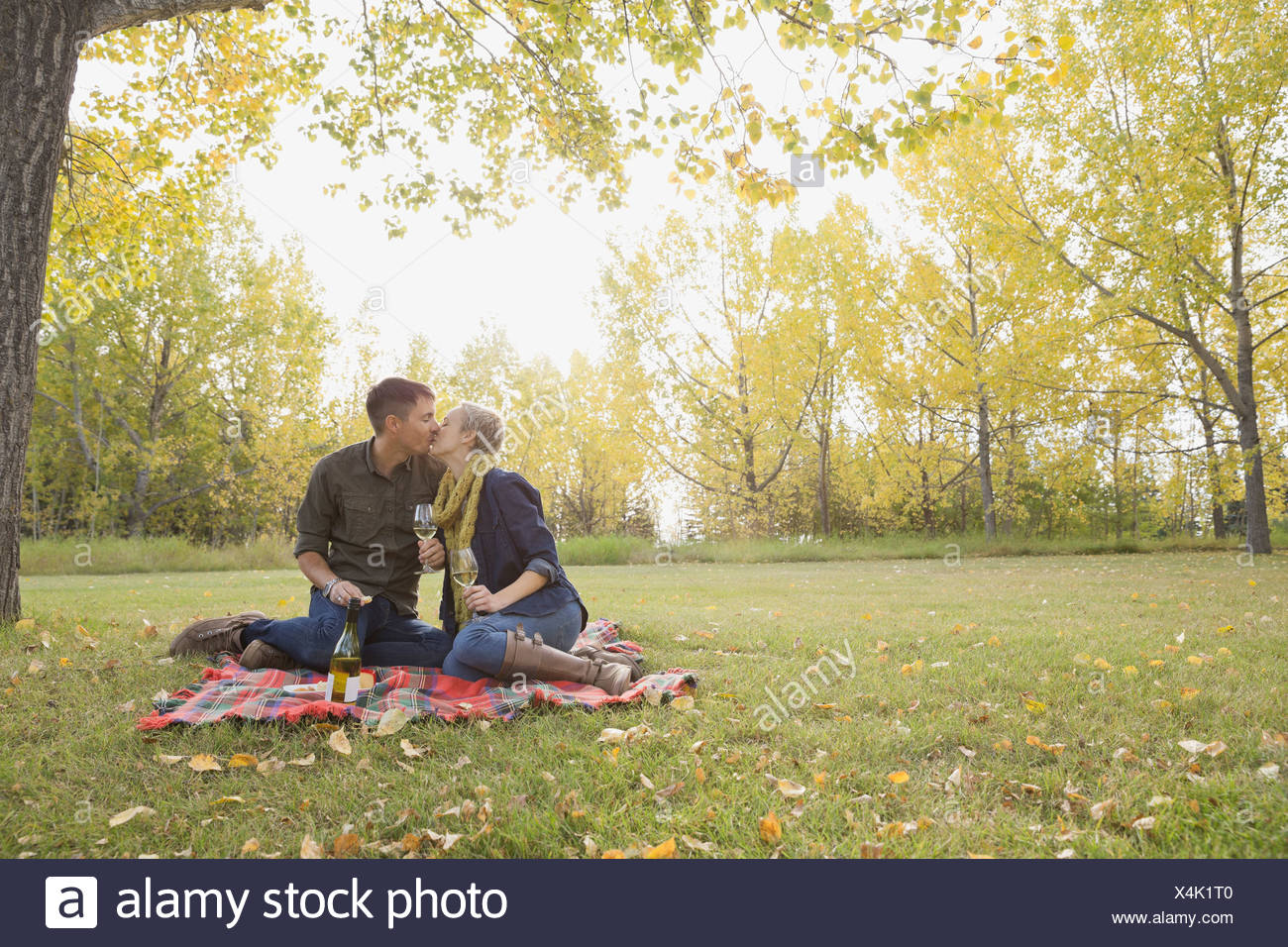 Loving couple with wineglasses kissing at park - Stock Image