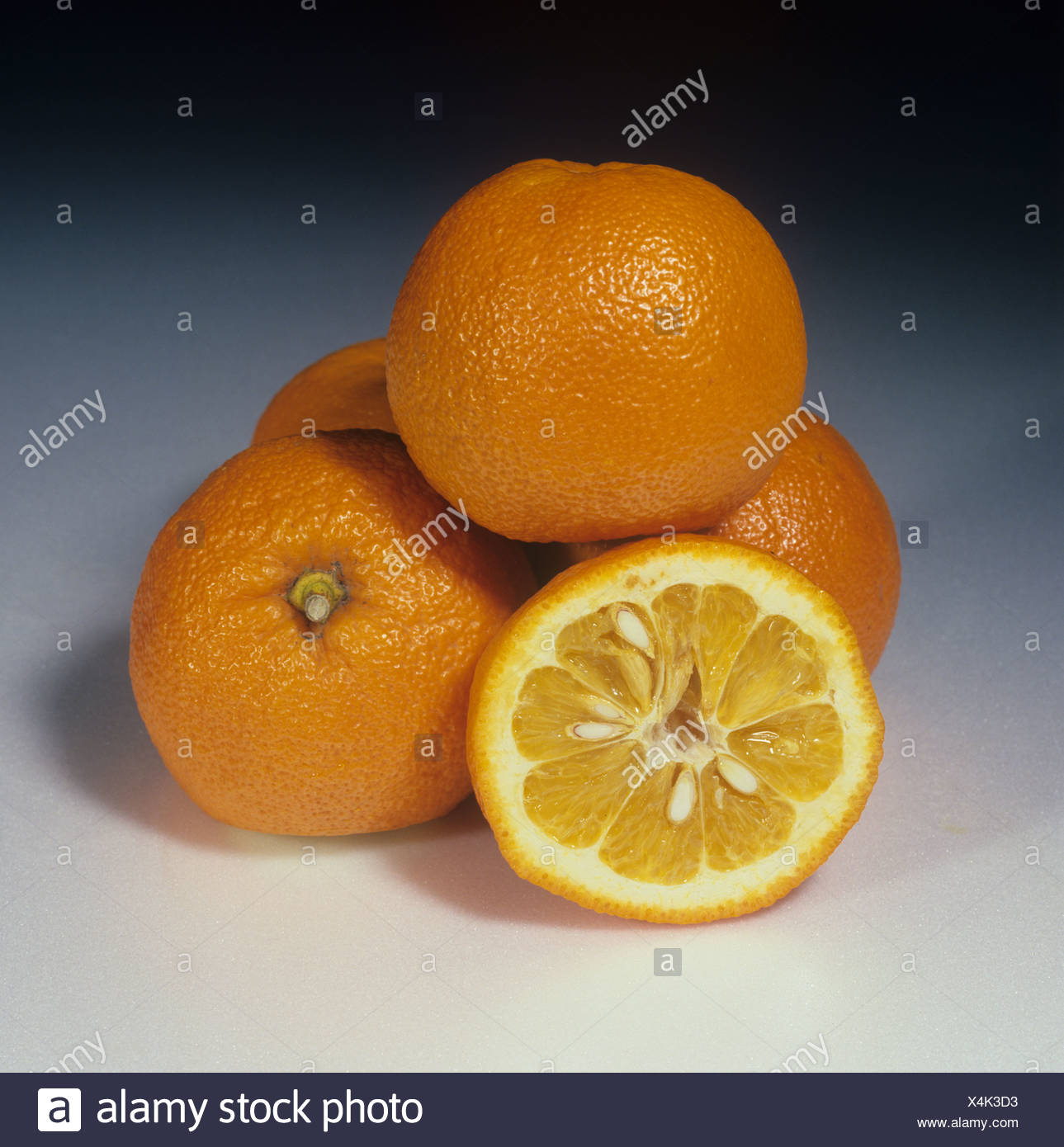 Orange Citrus aurantium Seville sour whole section fruit - Stock Image