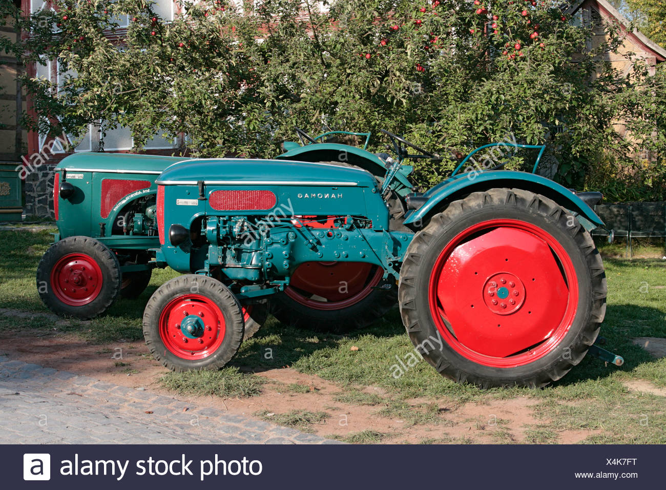 Vintage tractor, Hanomag, Treckertreff, Tractor Meet, in Hessenpark, Neu-Anspach, Hesse, Germany, Europe - Stock Image