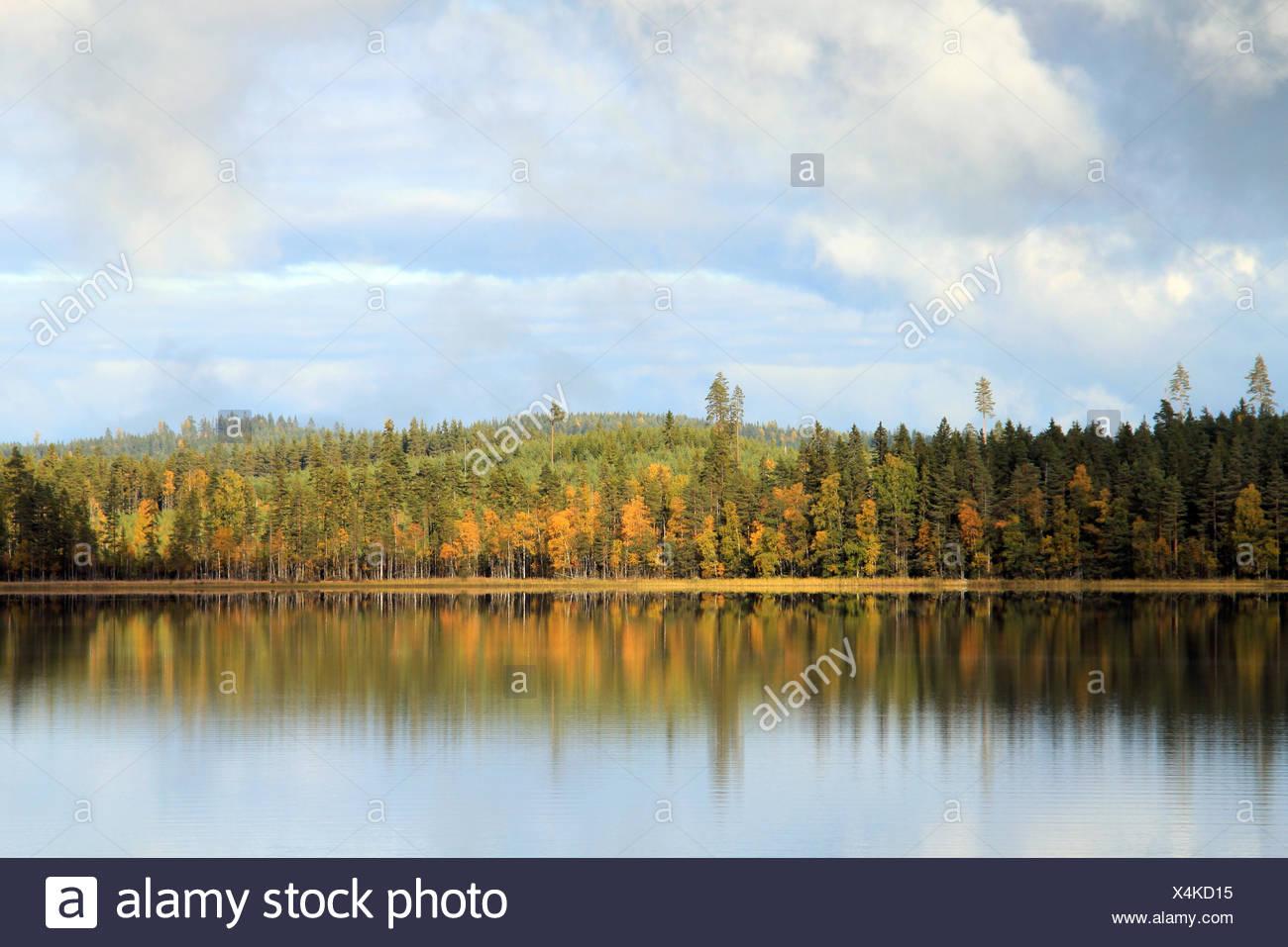 Autumn Lake - Stock Image