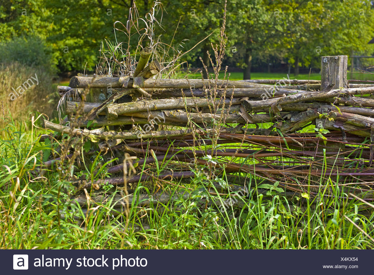 wattle fence in a rural garden, Germany, Lower Saxony Stock Photo
