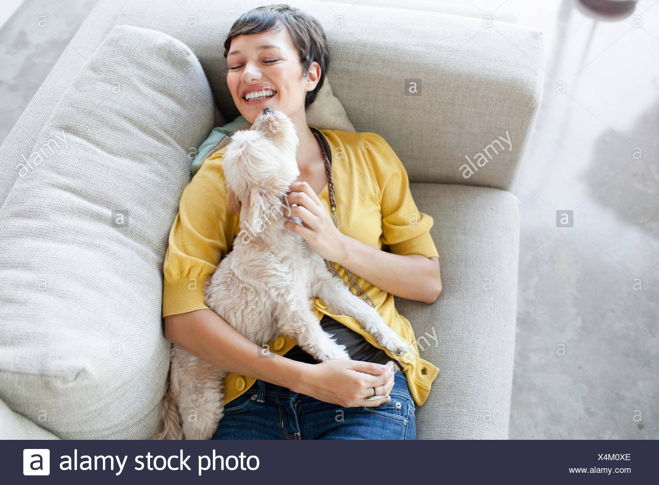 Young woman hugging dog on living room sofa - Stock Image