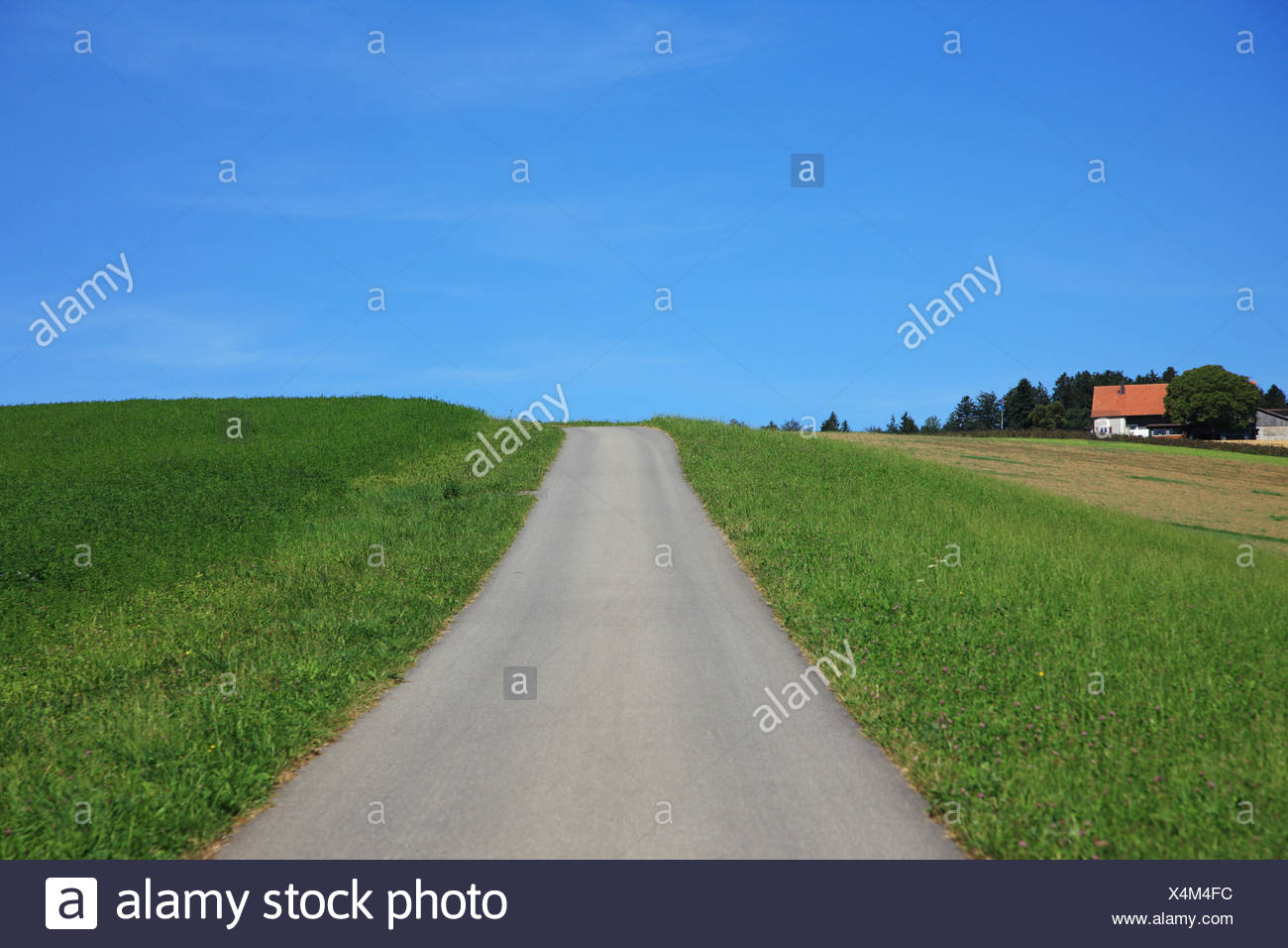 Road, Way, Forward, Horizon, Switzerland, Europe, canton  Lucerne, Rural, Tranquil, Landscape, Scenic, Outdoors, No People, Hori - Stock Image