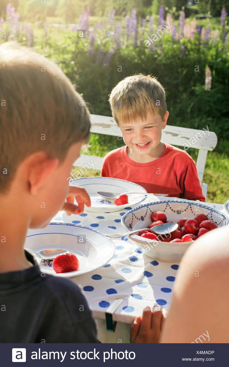 Sweden, Halsingland, Jarvso, Brothers (4-5, 6-7) eating strawberries in garden Stock Photo