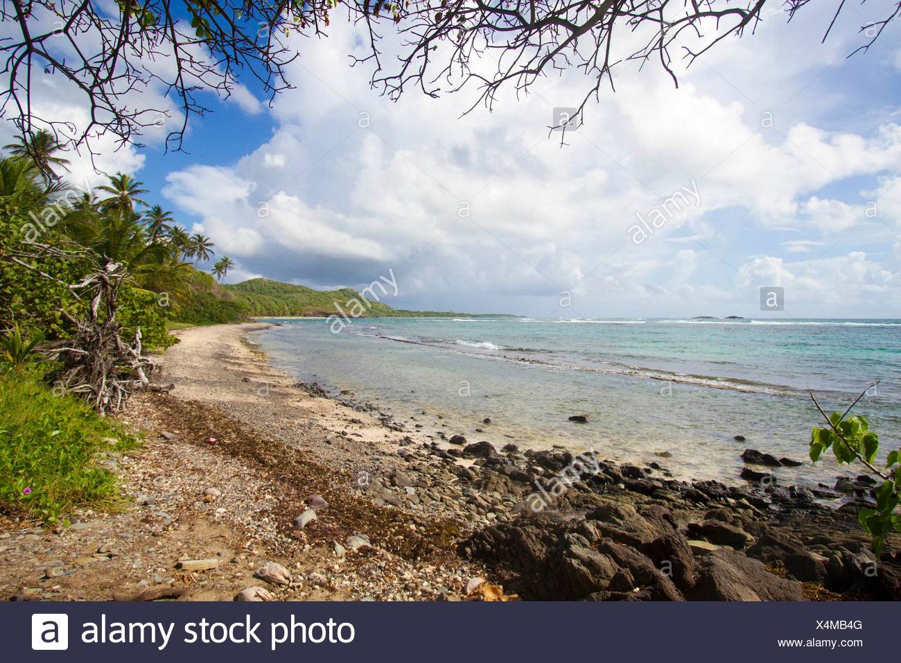 The walk of '' La Trace des Caps'' in Martinique is a 18 kilometres hikes along Cap Ferre, Pointe Macre, and pass by l'Anse Grosse Roche where there - Stock Image