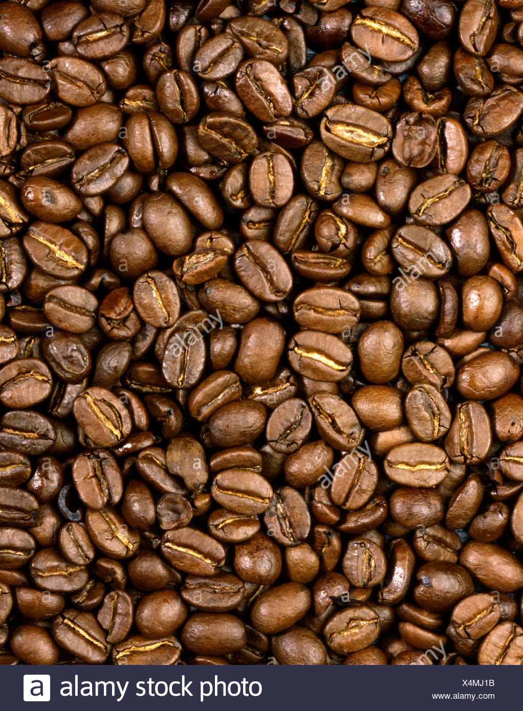 roasted coffee beans - Stock Image