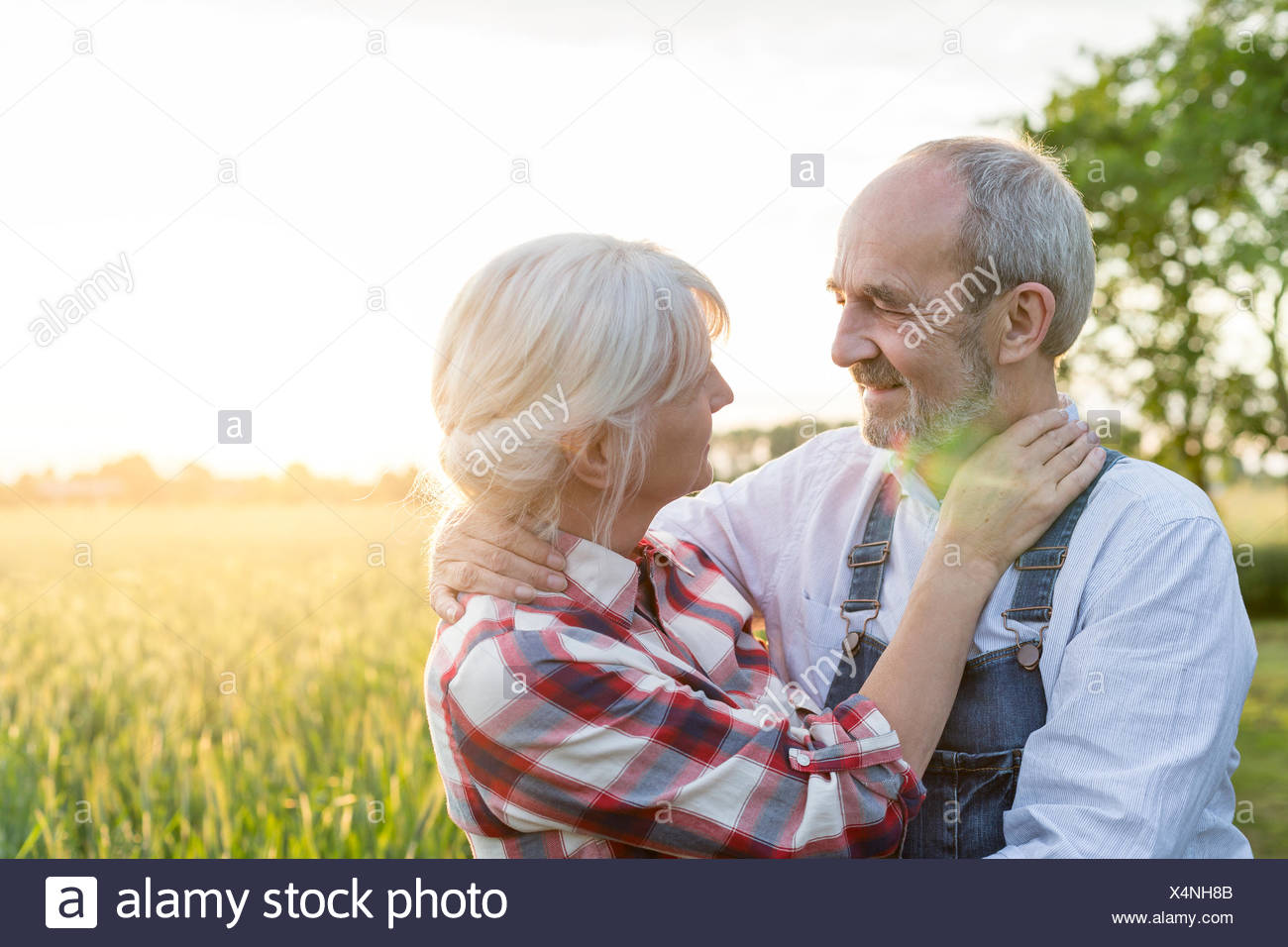 Affectionate senior couple hugging in sunny rural wheat field - Stock Image