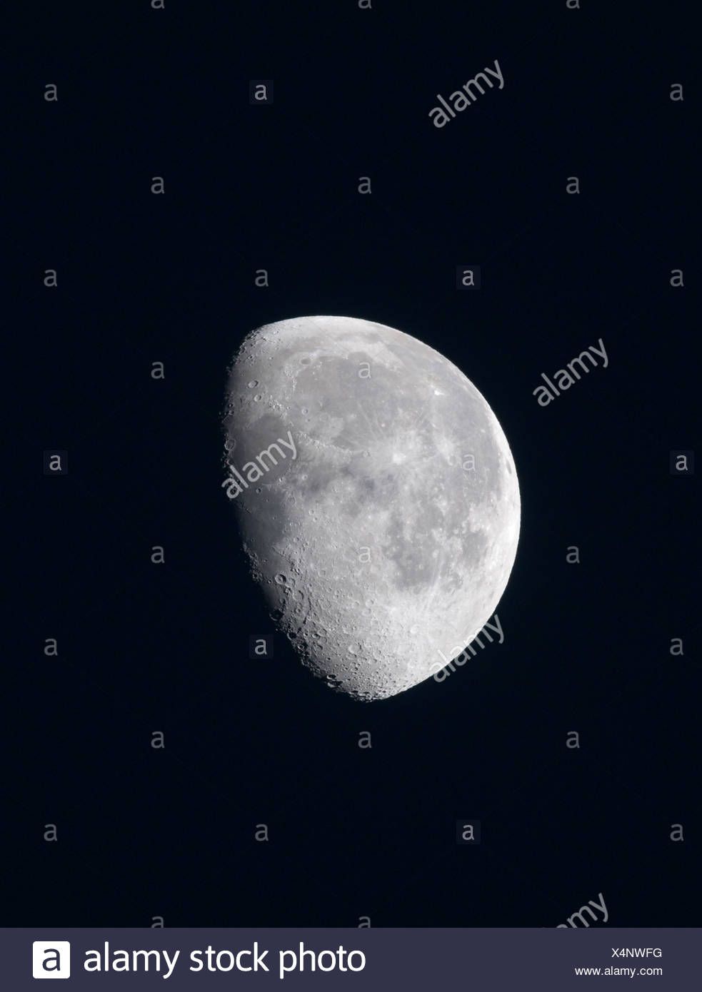 The Moon - Stock Image