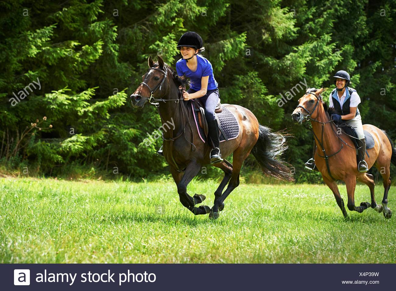 Mature woman and girl galloping on horse - Stock Image