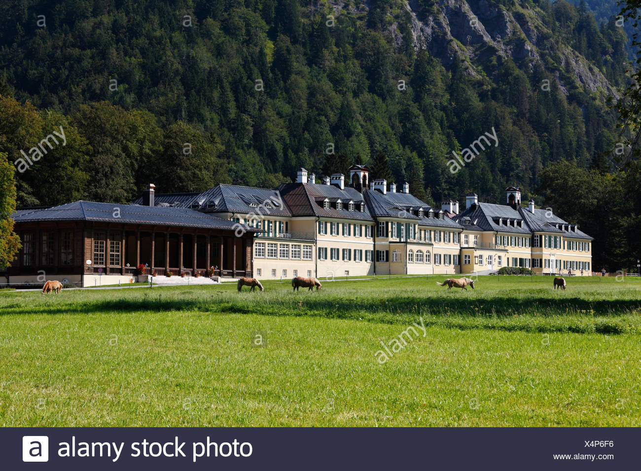 Neues Bad, educational centre of the Hanns-Seidel-Stiftung, Wildbad Kreuth, Tegernsee Valley, Upper Bavaria, Bavaria - Stock Image