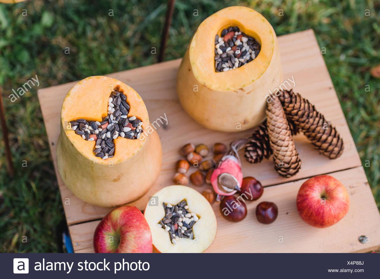 Garden, DIY, self-made bird feeder, pumpkins, apples, box, detail, - Stock Image