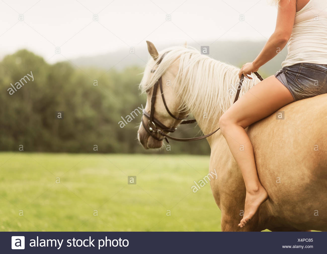Woman horseback riding in countryside - Stock Image