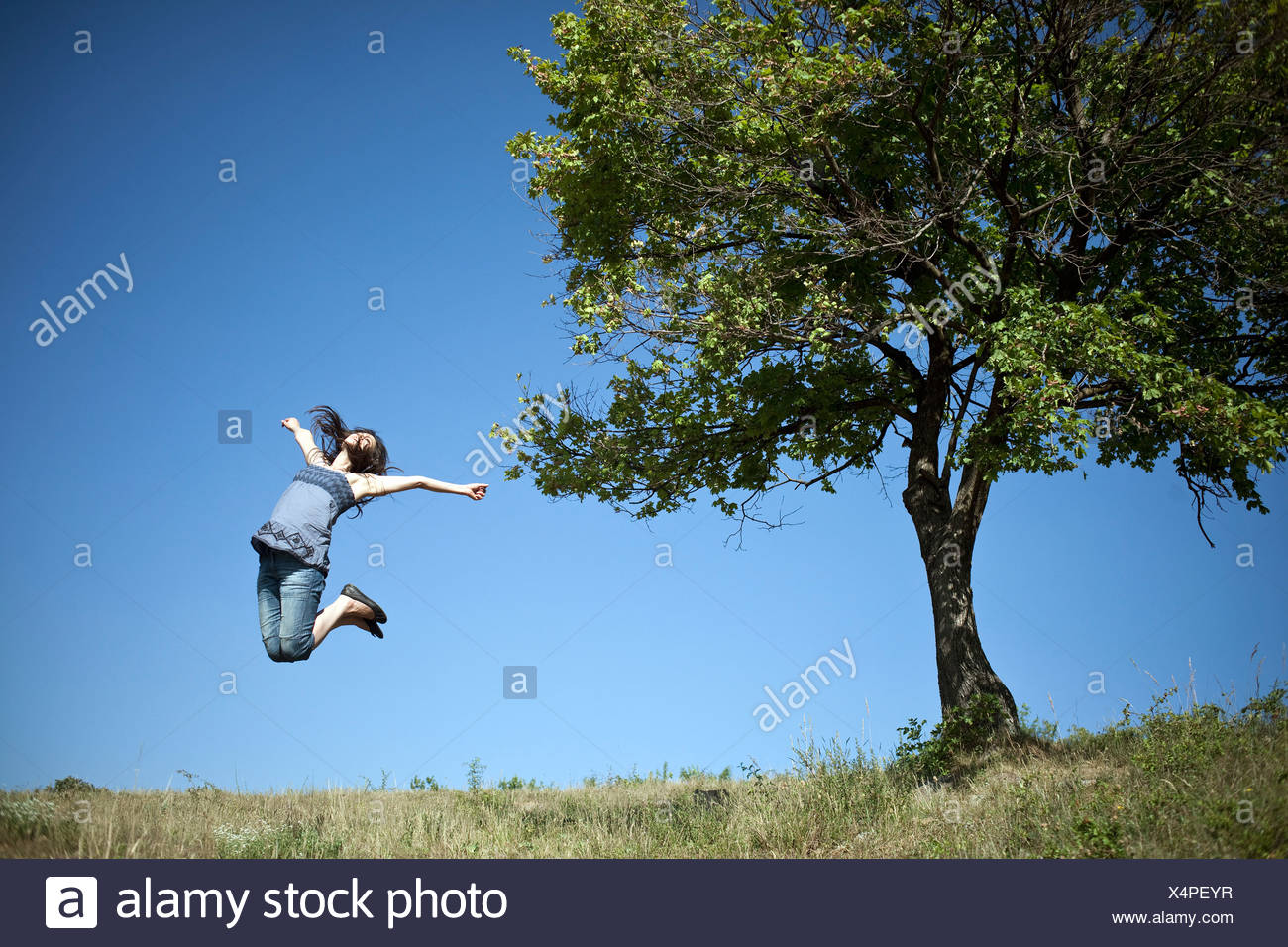 Woman jumping by tree - Stock Image