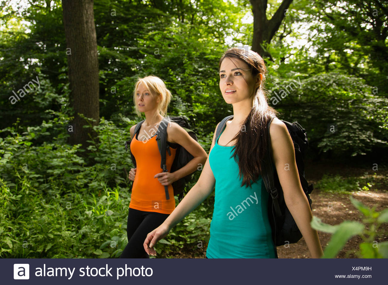 Women out walking in forest - Stock Image