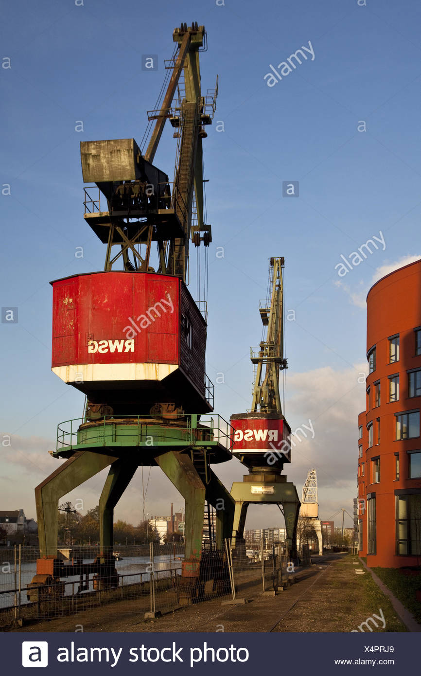 two cranes next to NRW archive in the Duisburg inner harbour, Germany, North Rhine-Westphalia, Ruhr Area, Duisburg - Stock Image