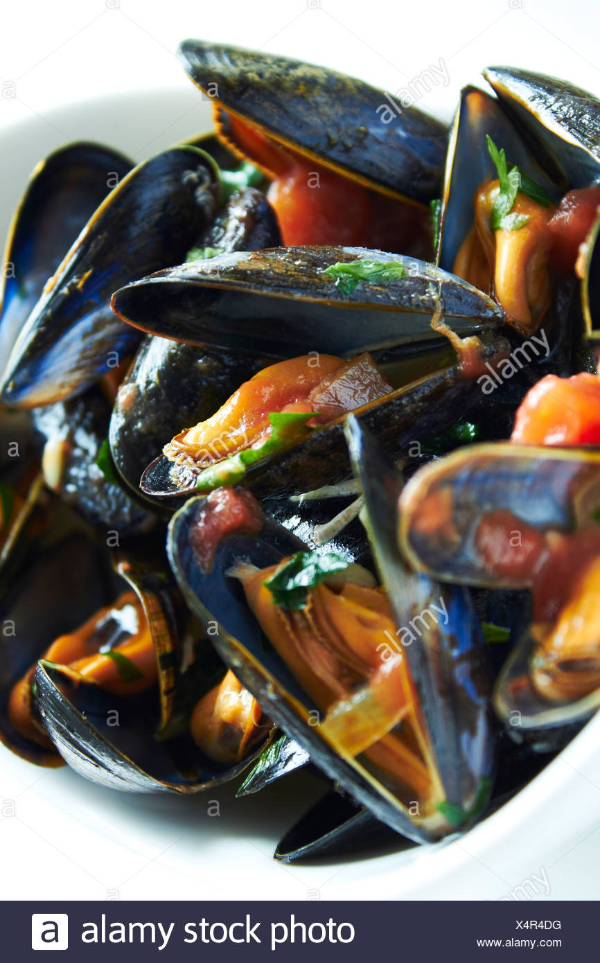 Steamed Mussels Provencal cooked scottish mussels with recipe - Stock Image