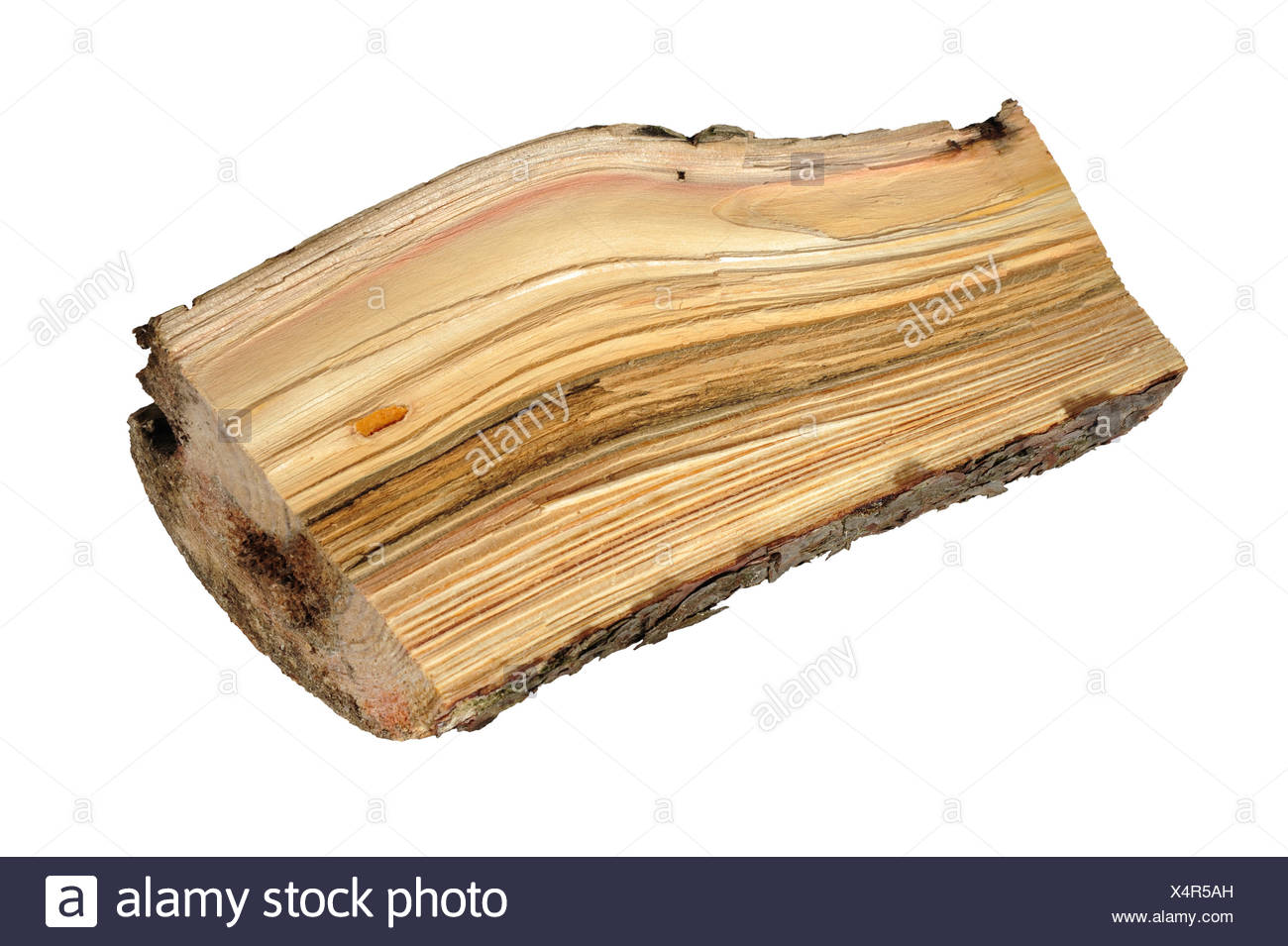 log,firewood - Stock Image