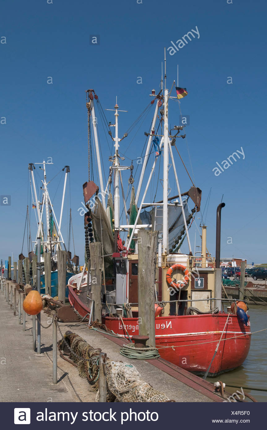 Shrimp cutter in the harbor of Neuharlingersiel, cutter with pulled-up fishing gear, Wadden Sea National Park, East Frisia, Low - Stock Image