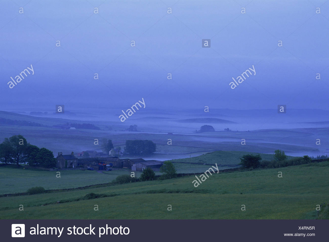 Great Britain, England, Northumbria, scenery, fog, farmhouse, Europe, Northumberland, width, distance, view, meadows, fields, hills, foggy, awfully, morning, atmospheric, deserted, blue, house, remotely, copy space, - Stock Image