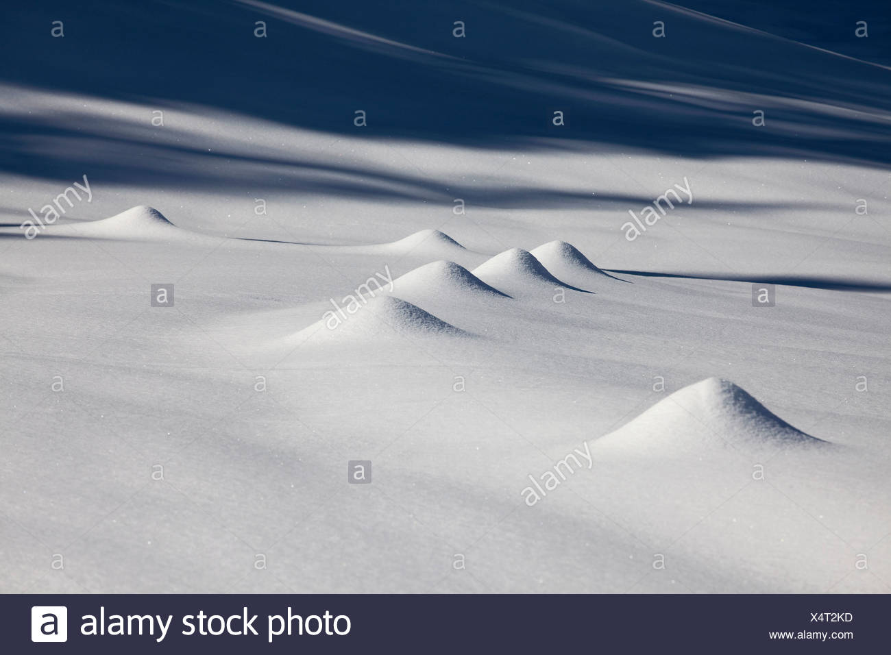 Snow hills in the Alpstein mountains caused by fences, Switzerland, Europe - Stock Image
