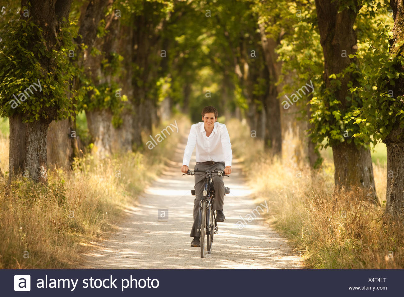 Young businessman riding along tree-lined road on bicycle - Stock Image