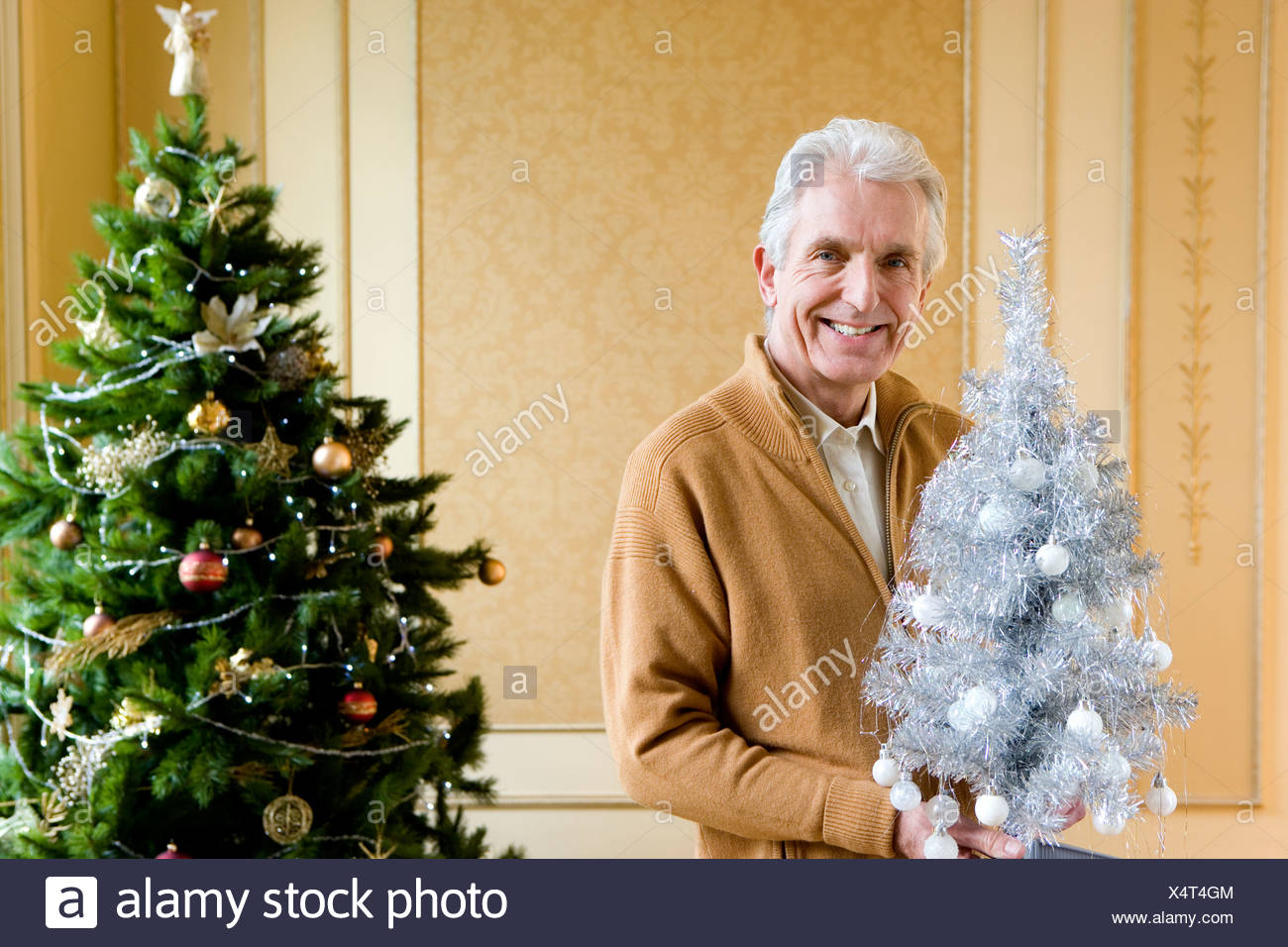 Senior man by Christmas tree with ornamental tree, smiling, portrait - Stock Image