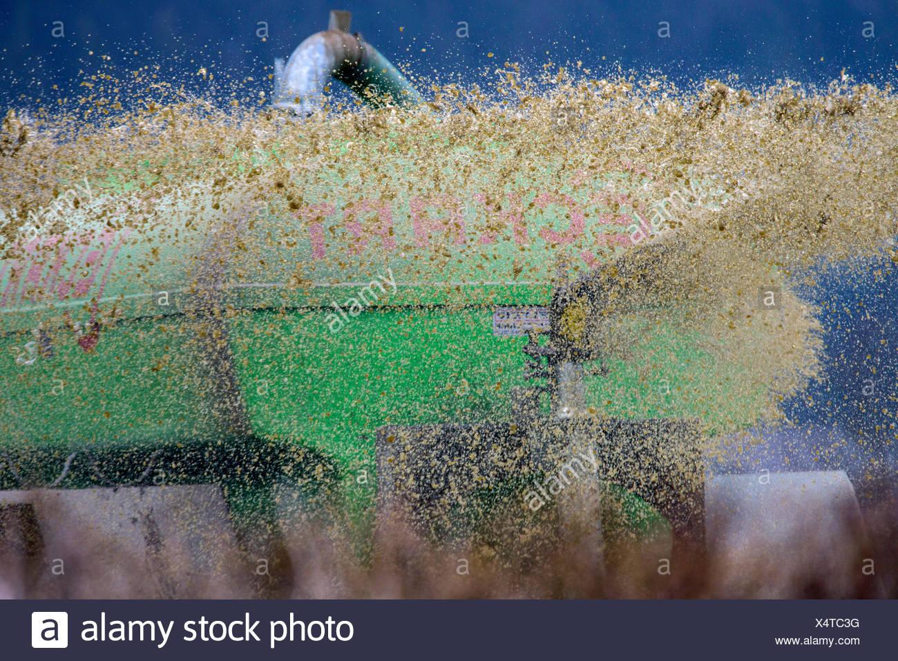 Guelle wird verspritzt, Deutschland, Bayern, Oberbayern | application of liquid manure, Germany, Bavaria, Oberbayern, Upper Bava - Stock Image