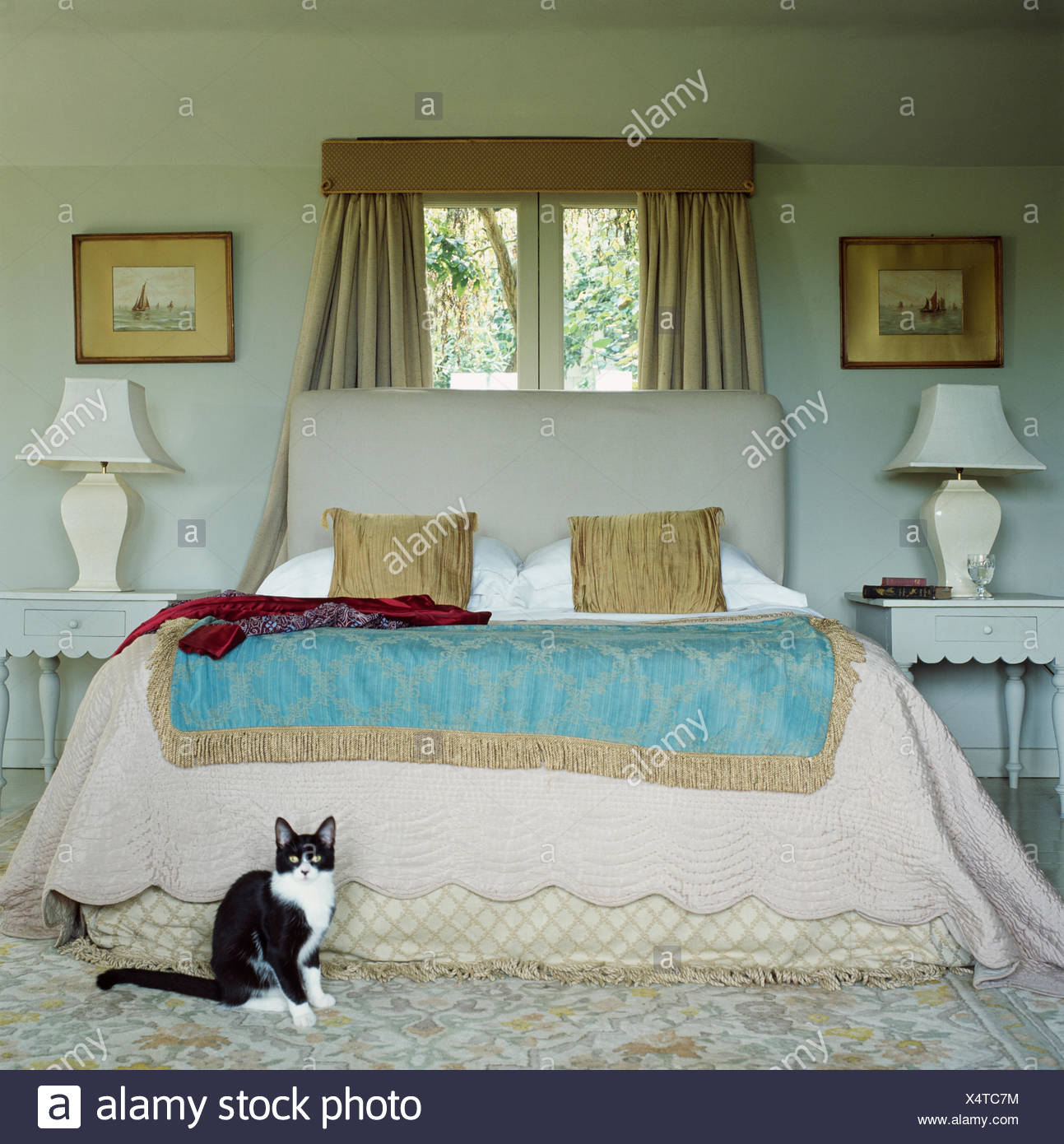 Black White Cat Sitting In Bedroom With Beige Quilt And Blue Throw On Upholstered Bed In Front Of Window Stock Photo Alamy