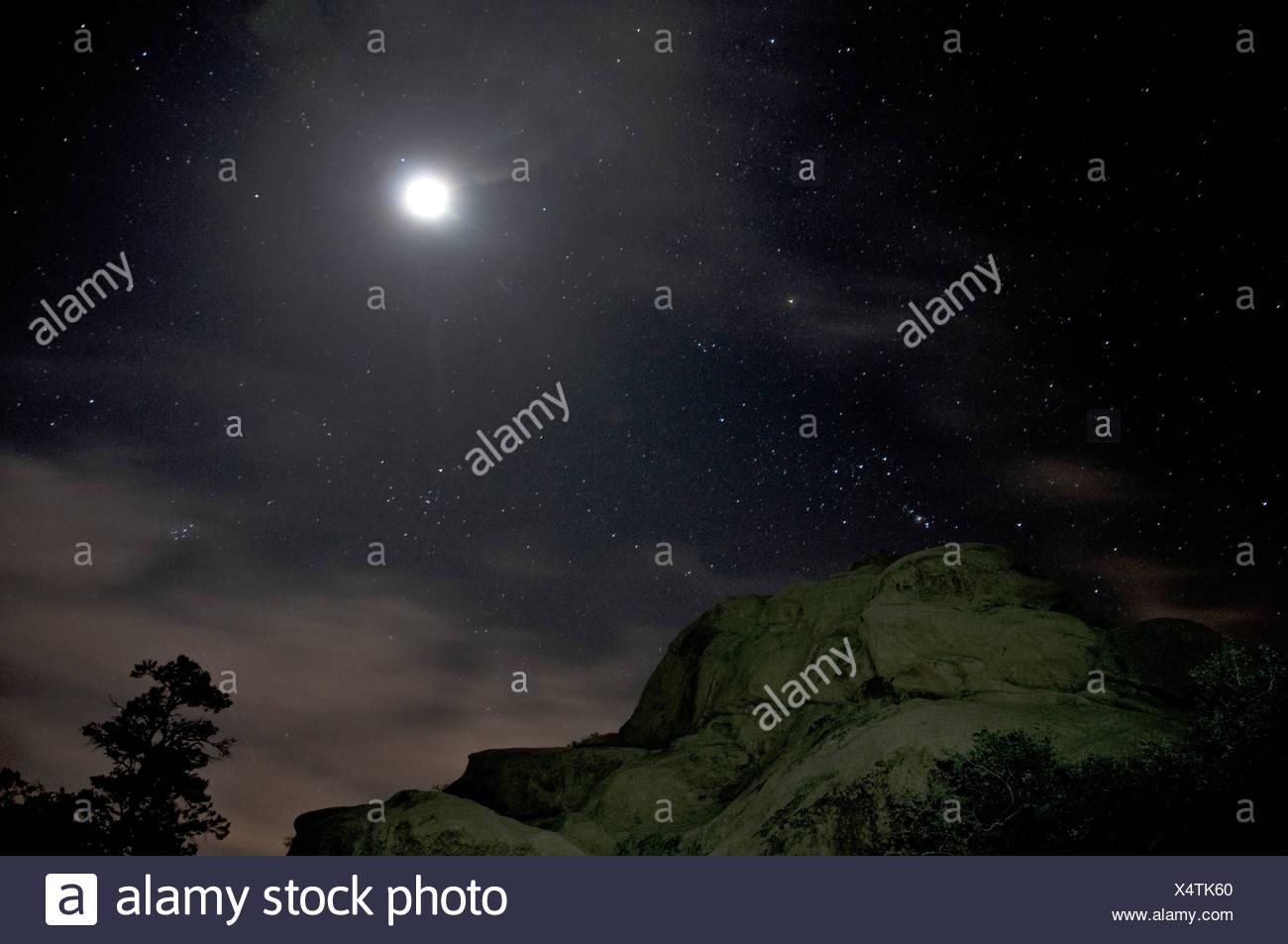 Joshua Tree National Park Darkness Night Stars Starry Sky