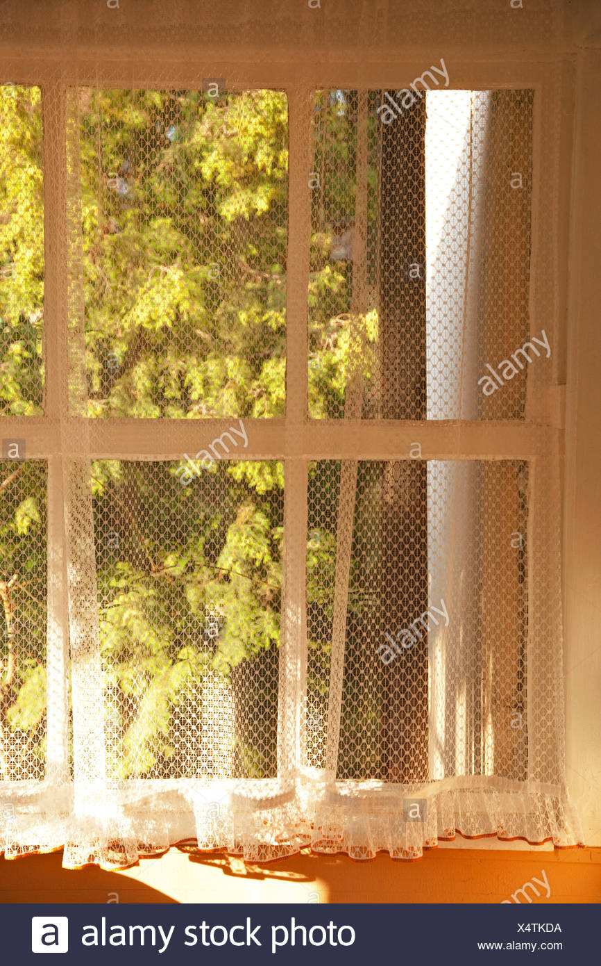 Windowsill, window, transom window, curtain - Stock Image