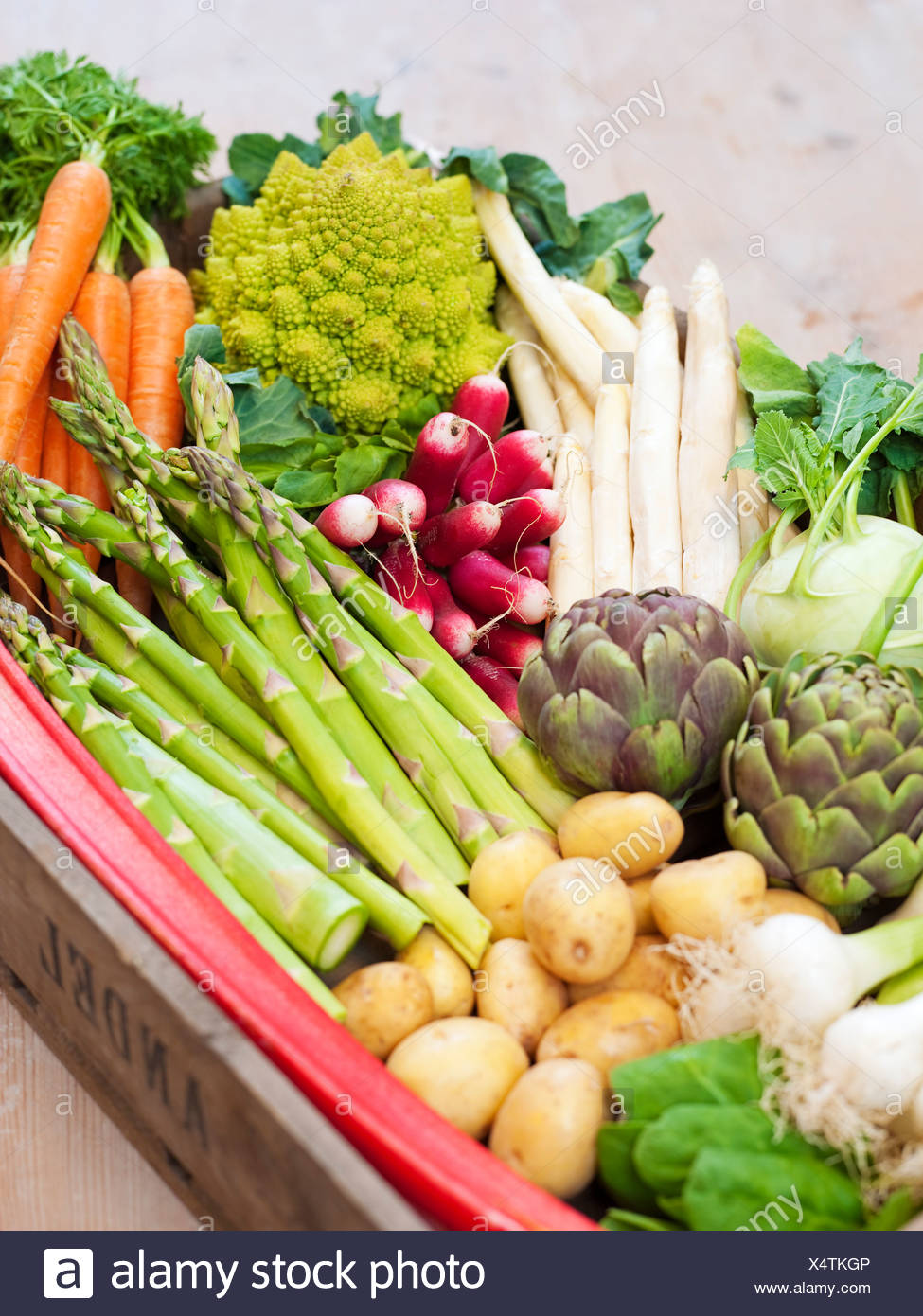 Basket full of vegetables - Stock Image