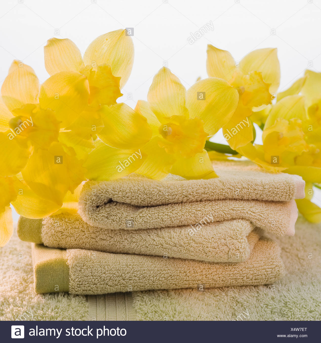 Flowers on stack of towels - Stock Image