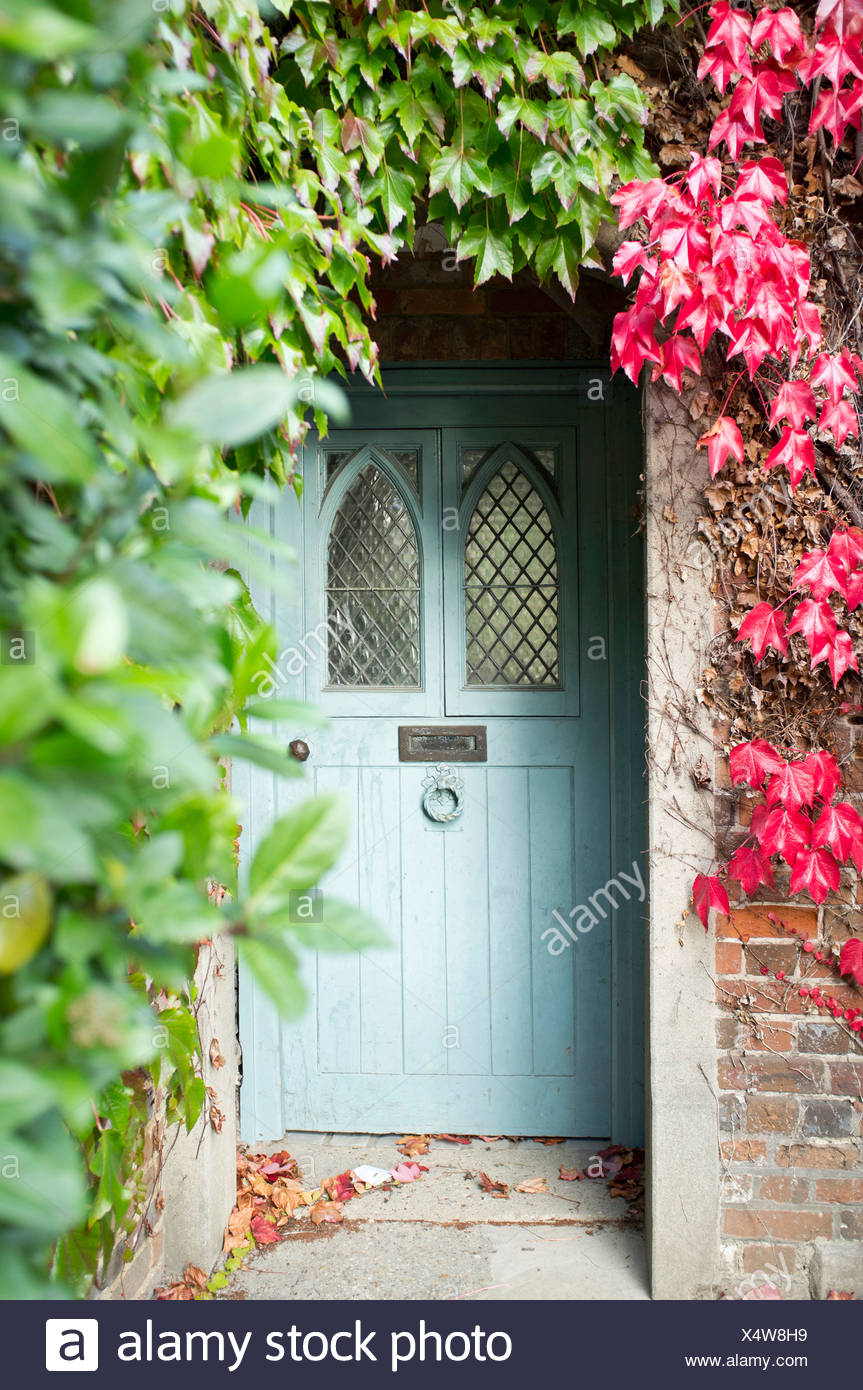 The front door of a house, surrounded by Virginia creeper Stock Photo