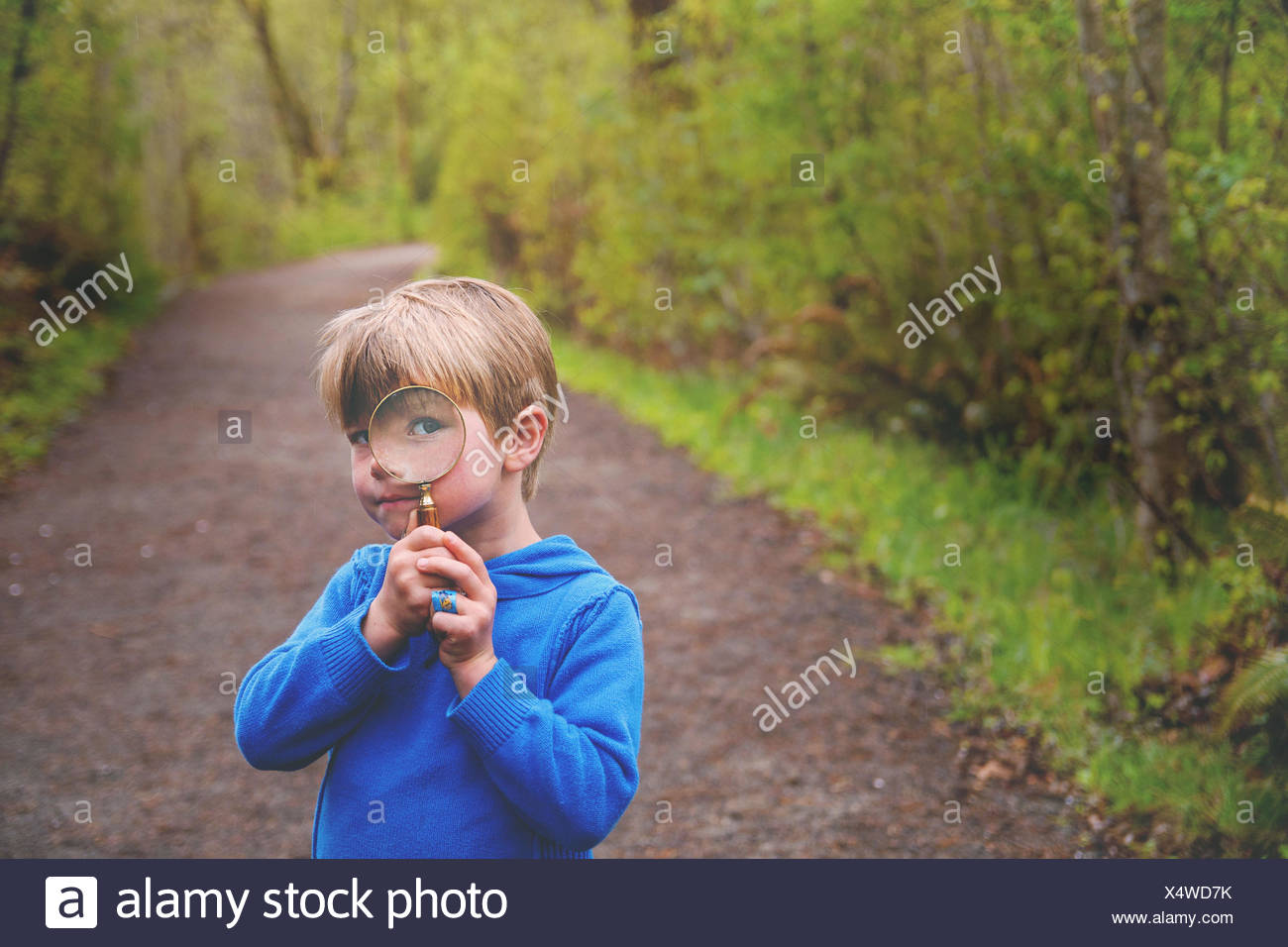 Boy (4-5) looking through magnifying glass on nature trail - Stock Image