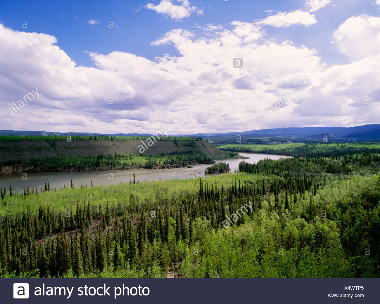 River flowing through lush landscape Stock Photo