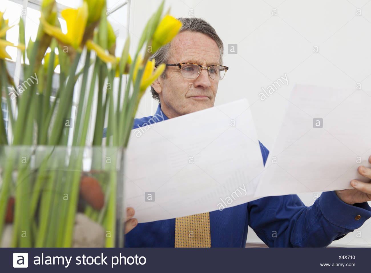 Businessman reading papers at desk Stock Photo