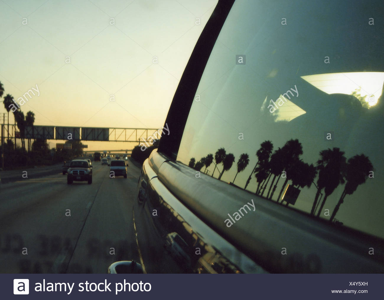 Reflections of palm trees in a car window in southern California - Stock Image