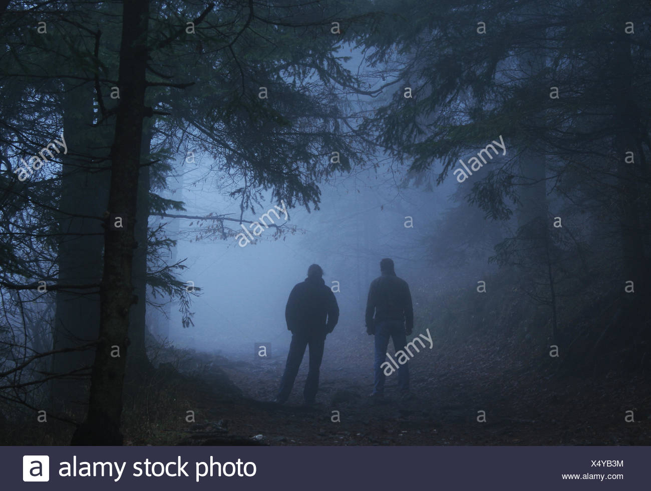 Mystical - Stock Image