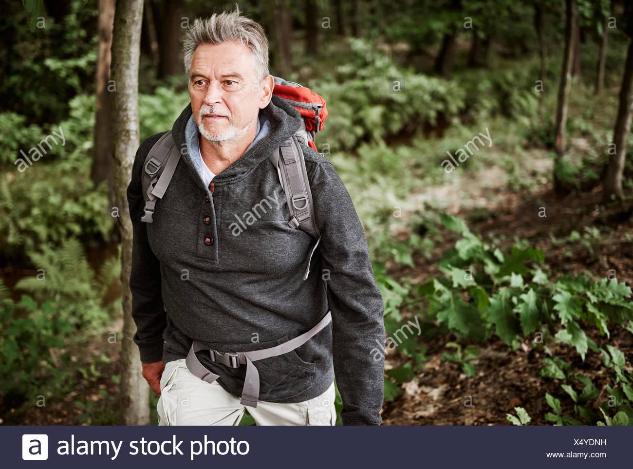Senior man hiking through forest - Stock Image